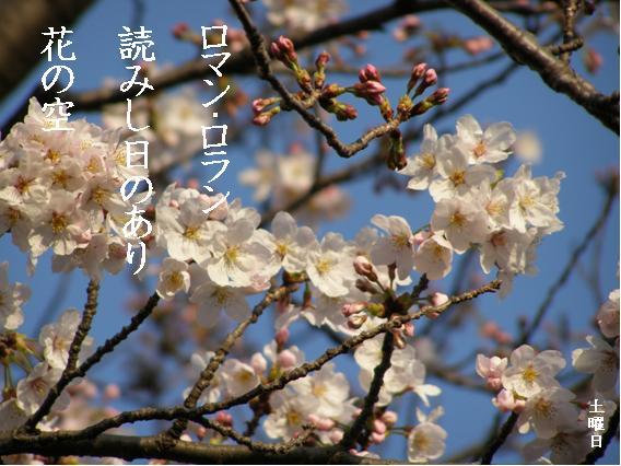 Photo_632