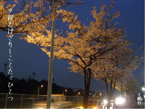 Photo_634