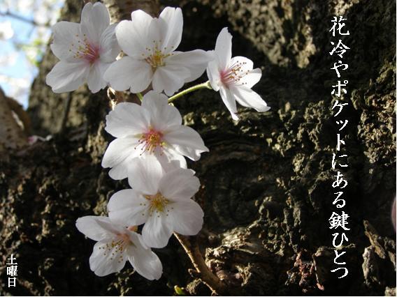 Photo_640