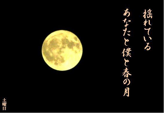 Photo_748