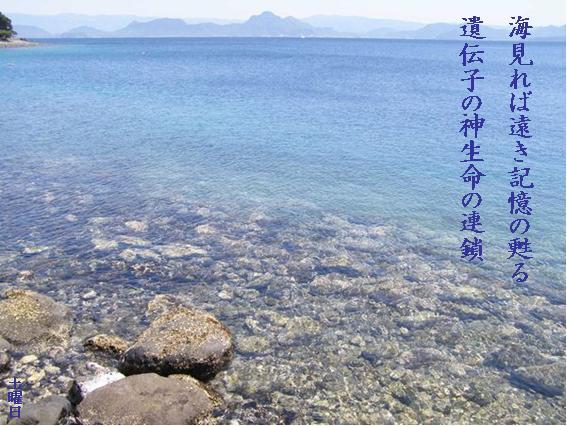 Photo_759