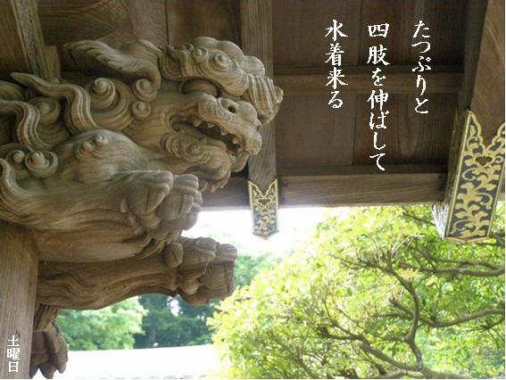 Photo_853